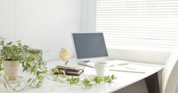 Arredare l'ufficio con le piante per aumentare la produttività