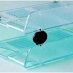 Vaschette trasparenti