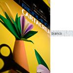 Cartoncino Cartacrea - 35x50cm - 220gr - bianco - Fabriano - Blister 10 fogli