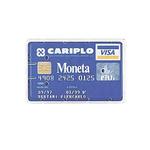 Porta Cards rigido - PVC - 8,5x5,4 cm - semitrasparente - Favorit