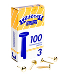 Fermacampioni ottonati N.3 - lunghezza 17 mm - Astra - scatola 100 fermacampioni