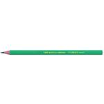 Matita Ecolutions Evolution Graphite 650 - gradazione HB - Bic - scatola 12 matite