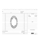 Schede in cartoncino per dentisti - verde - 17 x 24cm - Edipro - conf. 100 schede