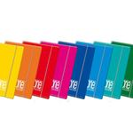 Cartellina One Color - 17x25cm - 3 lembi - con elastico - Blasetti