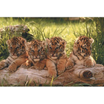 Tappetini mouse linea Cuccioli e WWF