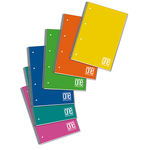 Maxiquaderno One Color - A4 - quadretto 5mm - 80 fogli - 80gr - spiralato - copertina ppl - Blasetti