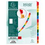 Separatore numerico 1/12 - cartoncino bianco 160 gr - tasti colorati - A4 maxi - Exacompta