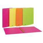 Raccoglitore PPL 22x30mm 4R dorso 15 colori assortiti neon Favorit