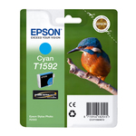 Epson - Cartuccia ink - Ciano - C13T15924010 - 17ml