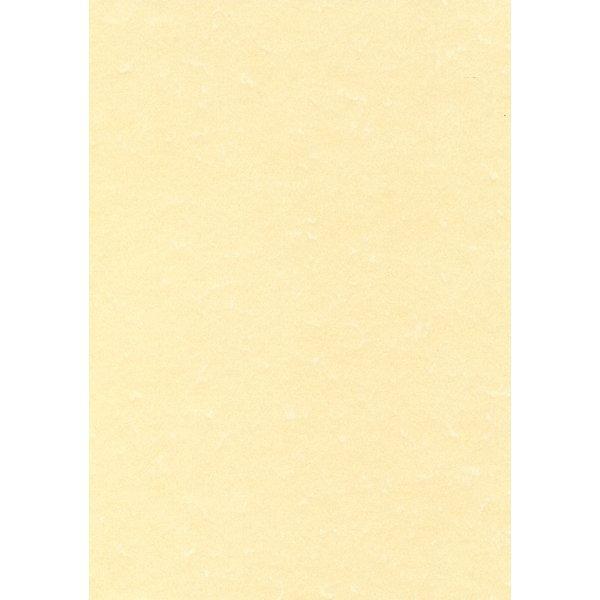 Top carta pergamena - Ufficio.com OS23